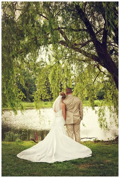 1000  ideas about Willow Tree Wedding on Pinterest
