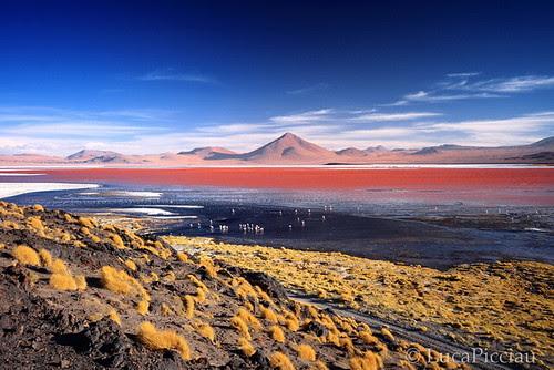 Laguna Colorada por LucaPicciau