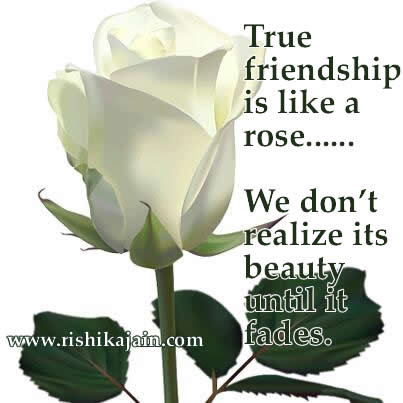 Friendship Quotetrue Friendship Is Like A Rose Inspirational