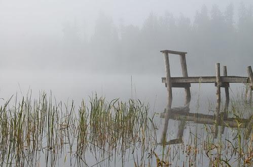 Morning on the lake 2