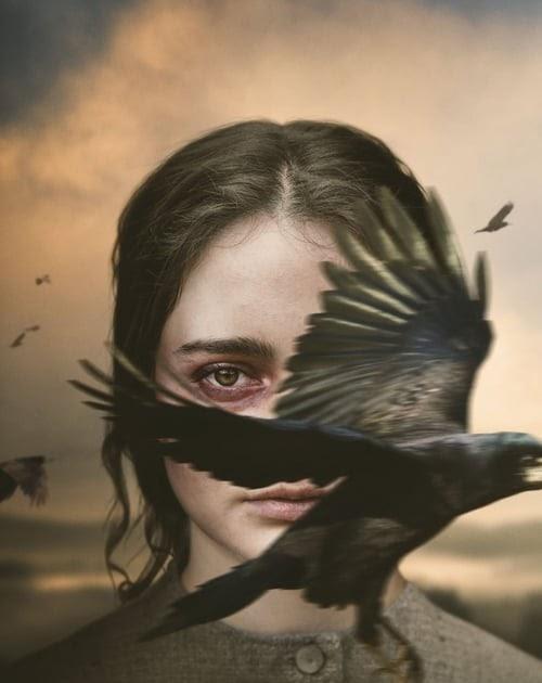 negativo Campo champú  Descargar] The Nightingale (2019) Ver Película Completa En Español Latino