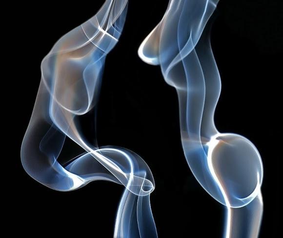 two torsos optical illusion