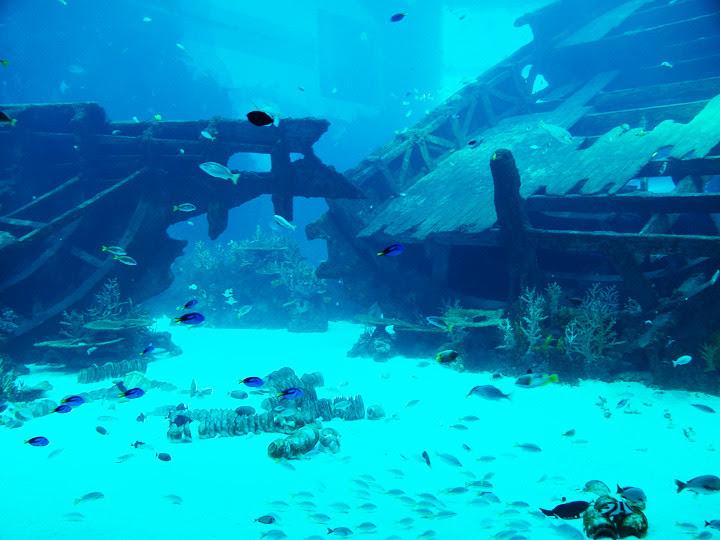 S.E.A. Aquarium entrance