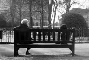 bench dog man