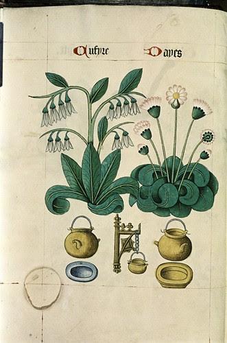 Cumfrey and Daisy, Cauldrons, powter plate, yellow dish.