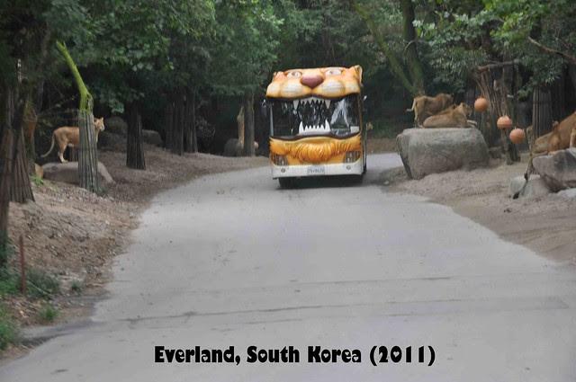 Everland - ZooTopia 11