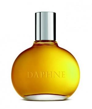 Daphne Comme des Garcons Feminino