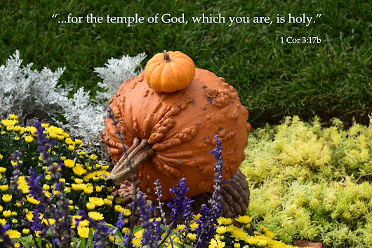 The temple of God, which you are, is holy.