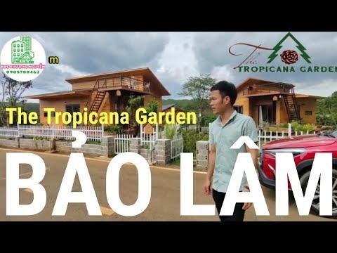 Cùng tham quan ngôi nhà nghỉ dưỡng tại Làng sinh thái The Tropicana Garden Bảo Lâm