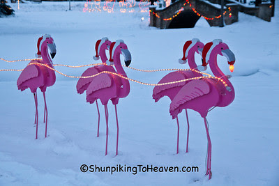 Pink Flamingo Pulling Sleigh, Christmas at Village Park, Waunakee, Wisconsin