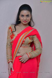 Actress Bhimbika