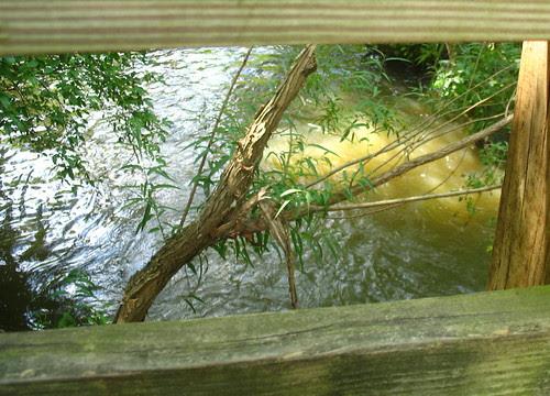 ph framed creek