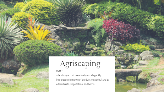 Agriscaping= designing your edible landscaping | Handyman Larry