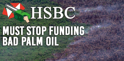 HSBC stop funding forest destruction