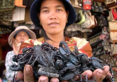 phụ nữ, miền Tây, kinh doanh, kinh dị, chuột, rắn