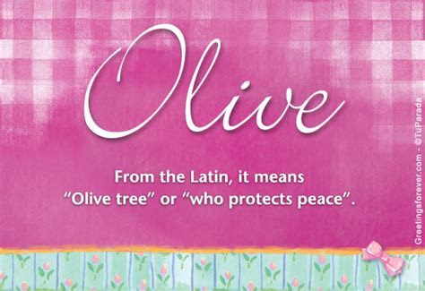 Olive Name Meaning   Olive name Origin, Name Olive