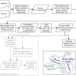 Visualizing the Topical Structure of the Medical Sciences: A Self-Organizing Map Approach