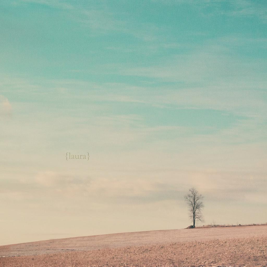 tree, landscape, sky, country