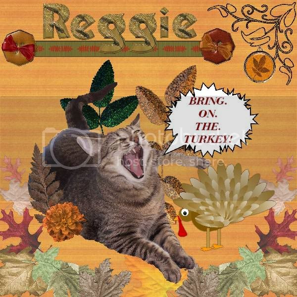 Domestic Cat,Tabby Cat,Talking Turkey