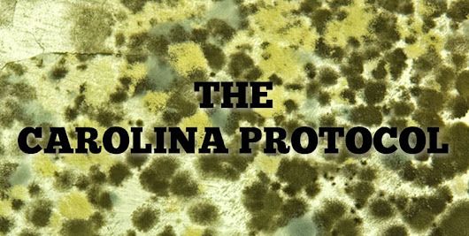 The Carolina Protocol for Mold Removal