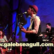 Galeb and the Seagull  - YouTube
