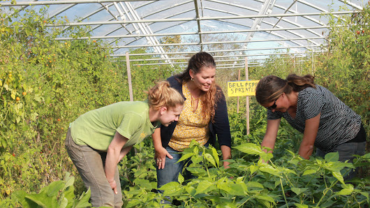 Agroecology Education Farm and NC State Dining - A Perfect Pairing