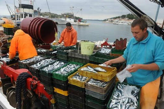 European Union 'Pleased' by Fisheries Agreement with Morocco