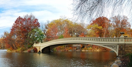 Take in the Sights of Fall from the Eastern Star | Eastern Star Yacht Charters
