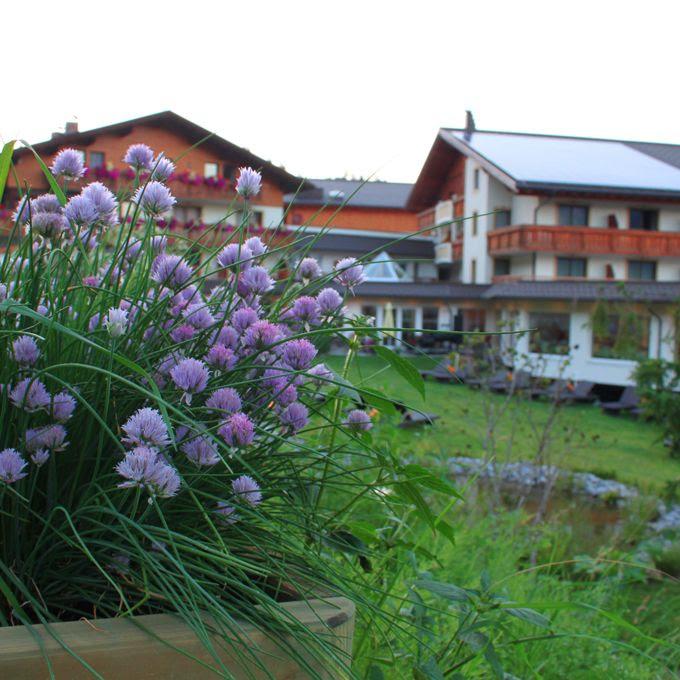 Hotel Schillerkopf Kräuter