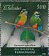 Turquoise-browed Motmot Eumomota superciliosa