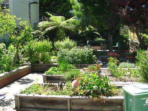 Noe-Beaver community garden