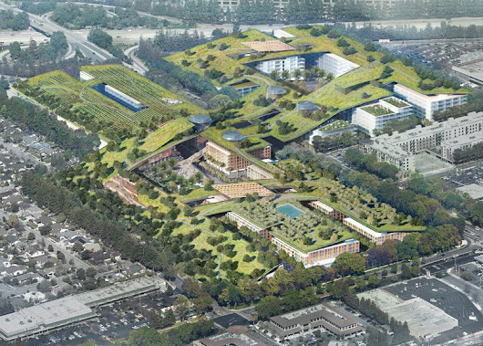 Silicon Greenery: World's Largest Green Roof to Span City Blocks