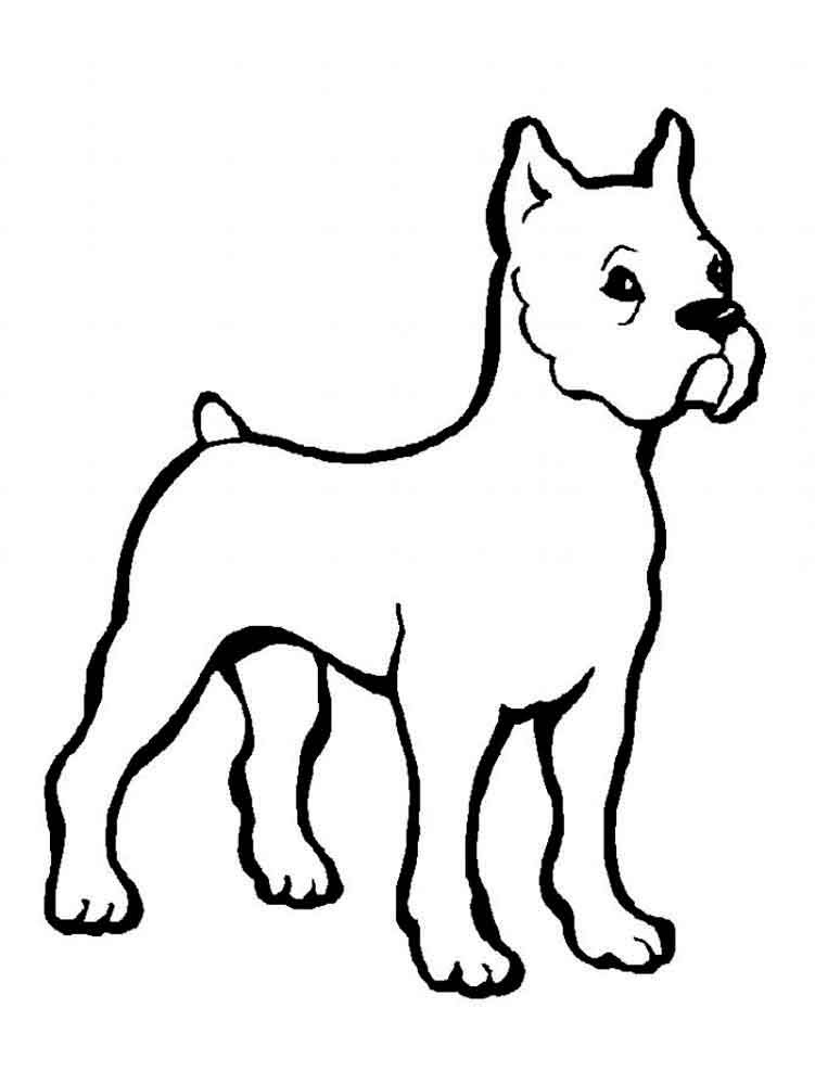 coloring pages animals dogs 4