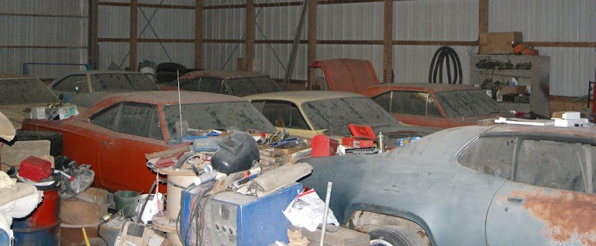 SuperBird in the Barn: Birds of a Feather....