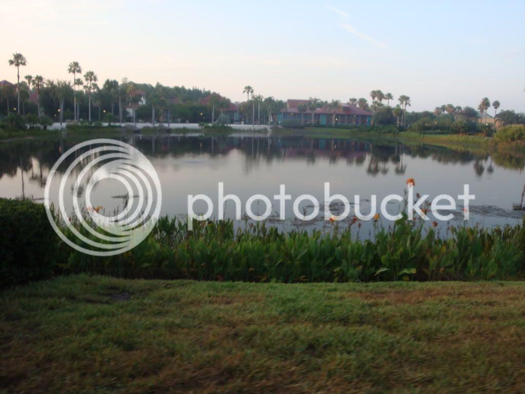 Lake near the hotel