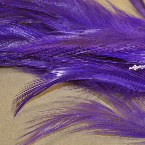 78024030-04 Feathers -  Coque Hackles - Royal Purple (Pack)