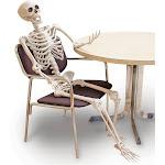 60 inch Posable Skeleton Halloween Decoration, Adult Unisex, Size: One Size