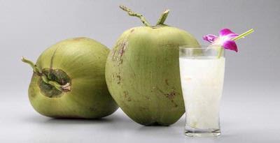 kelapa