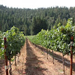 Anderson Valley Wineries – New Discoveries