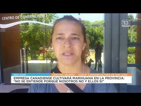 Cannabicultores de San Juan en contra de la producción canadiense