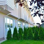 curte-spate-jasmine-residence