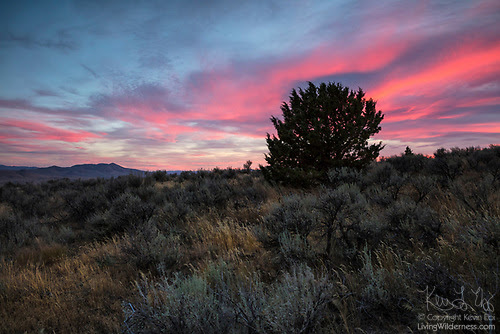 Colorful Sunset over Mormon Basin, Oregon