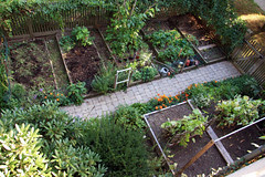 spetmebere aerial of the kitchen garden