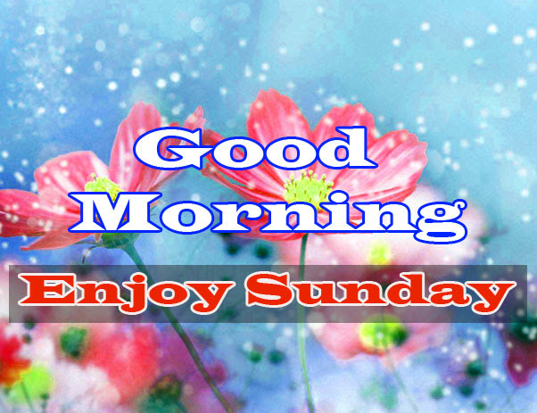 Sunday Good Morning Wishes Images HD Download