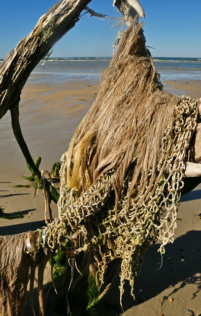 Hair Net (2)
