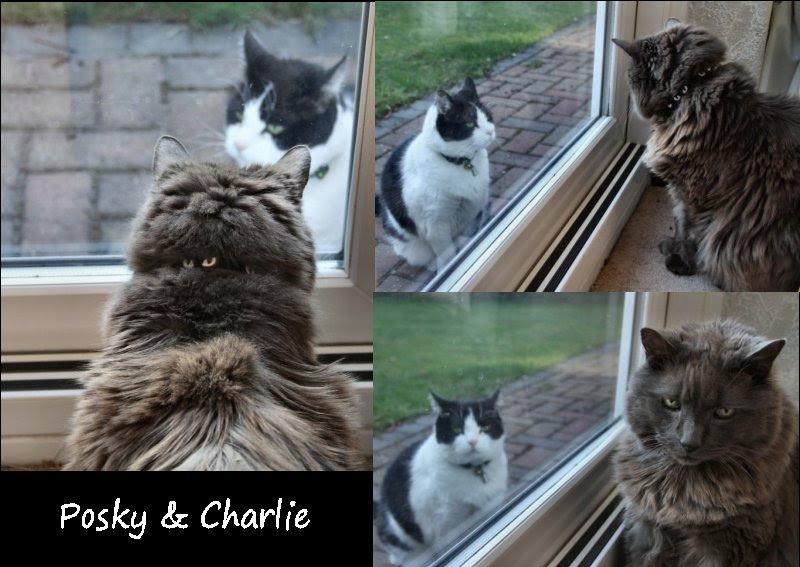Posky & Charlie