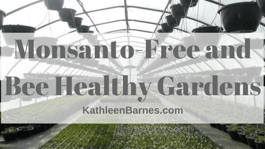Monsanto-free and bee healthy gardens – KathleenBarnes.com