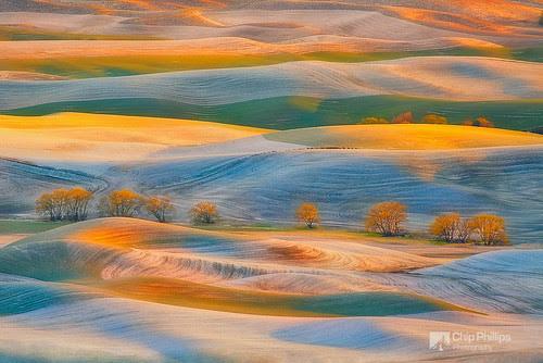 Spring Snow, Palouse por Chip Phillips