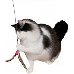 Imperial Cat 01131 Da Bird Wand Cat n Around Wands