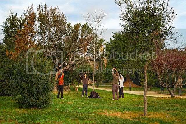 people around tree engaged in outdoor activities at Parc de la Ciutadella [enlarge]